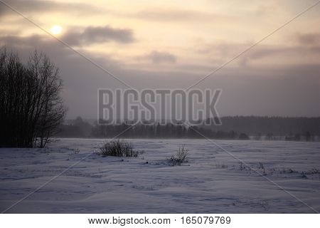 Winter evening. There is a weak snow, the strong wind blows. In the field the blizzard has formed snowdrifts.