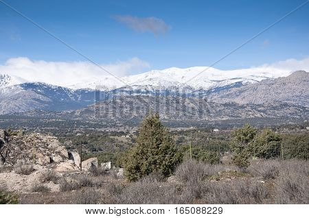 Mediterranean vegetation at Guadarrama Mountains, Madrid, Spain. It is a mountain range forming the main eastern section of the Sistema Central the system of mountain ranges at the centre of the Iberian Peninsula
