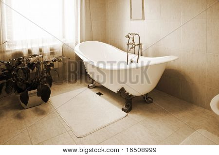 Bathroom with a beautiful bath and an house plant