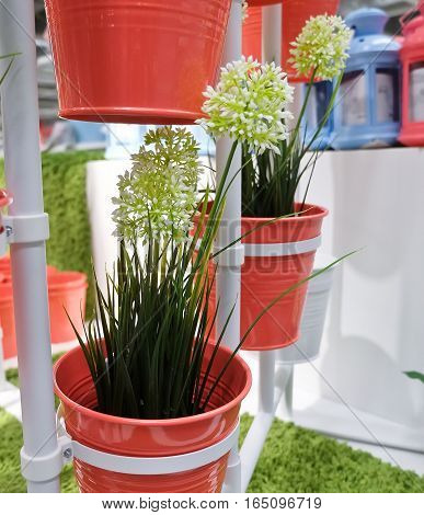 White Artificial Allium Giganteum Blossoms or Giant Onion Flower in Orange Metal Pots for Home and Office Decoration without The Care.