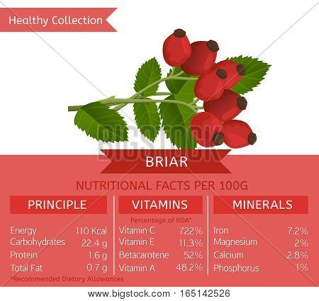 Briar health benefits. Vector illustration with useful nutritional facts. Essential vitamins and minerals in healthy food. Medical, healthcare and dietory concept.
