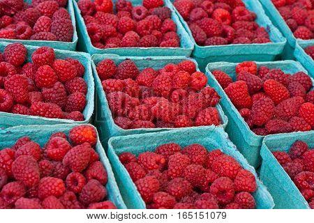 Cartons of fresh raspberries at a farmers market.