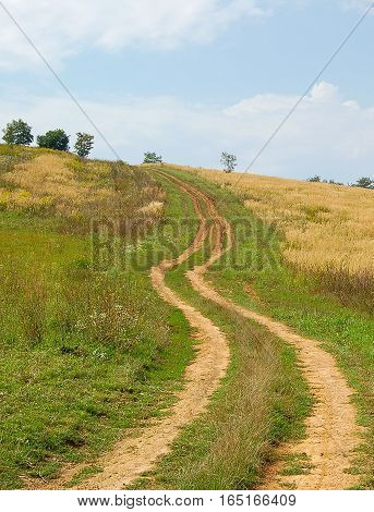 Curving dirt road in a Hungarian countryside