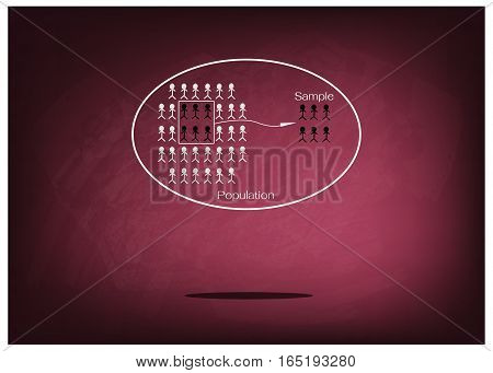 Business and Marketing or Social Research Process The Sampling Methods of Selecting Sample of Elements From Target Population to Conduct A Survey on Chalkboard.