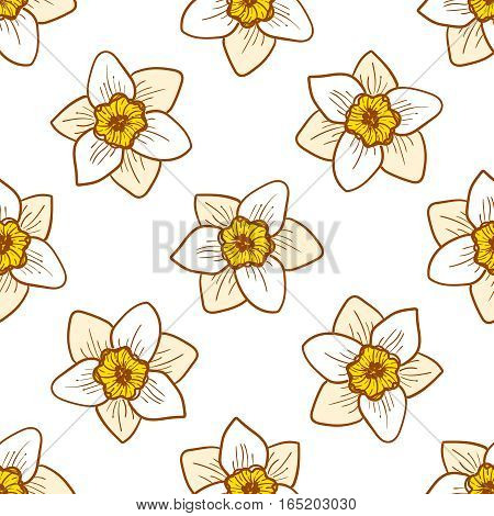 Narcissus flowers seamless pattern, hand drawn tileable background. Yellow and golden plants on white