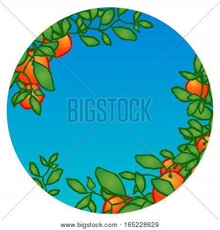 Branches of mandarin orange fruits. Hand drawn sketchy cartoon clip-art, vector illustration for greeting card, certificate, poster or gift package. Tangerines with leaves in garden