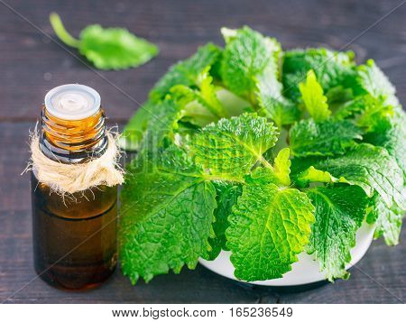 Essential oil of melissa or mint in small brown bottle with fresh green leaves on dark wooden background. Close up