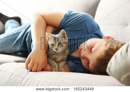 Child With Kitten On Grey Sofa At Home