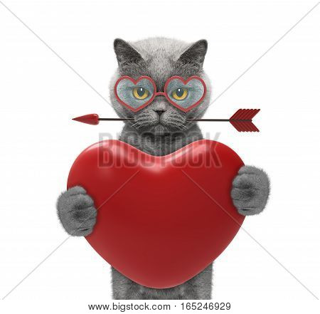 pretty cat in glasses holding a heart -- isolated on white