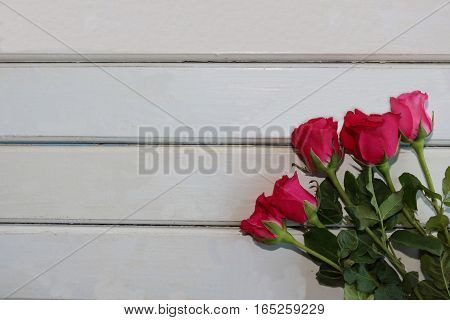 Top view of roses on white wooden board with copyspace background for valentines day concept. Blank on left space for message.