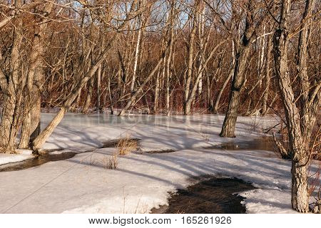 Melting ice and snow in the forest in the spring of the river.
