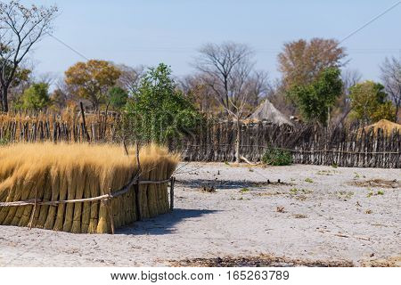 Mud Straw And Wooden Hut With Thatched Roof In The Bush. Local Village In The Rural Caprivi Strip, T