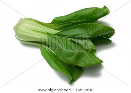 Baby Pak Choy (Chinese Cabbage) isolated on white