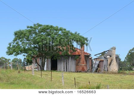 Old country building with Jacaranda tree.