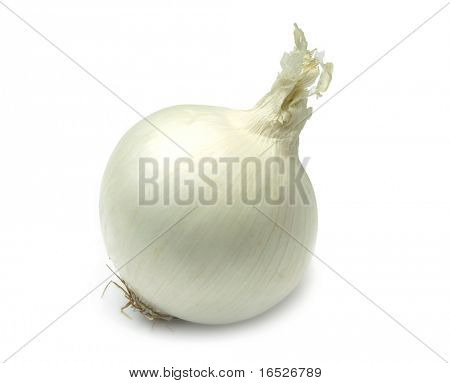 Single white onion isolated on white