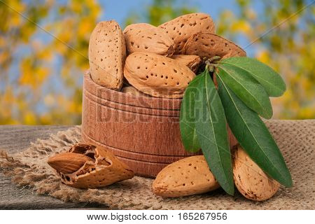 almonds with leaves in a bowl on the old wooden board with blurred garden background.