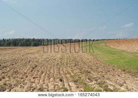 Landscape with arable fields in countryside on summer day