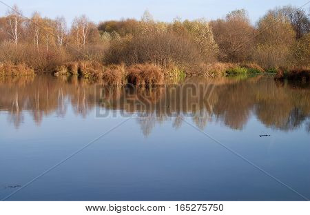 Autumn landscape with still pond and yellow trees