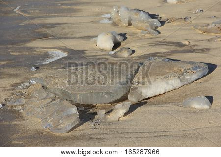 Ice slabs on the frozen sand on the beach of Lake Michigan