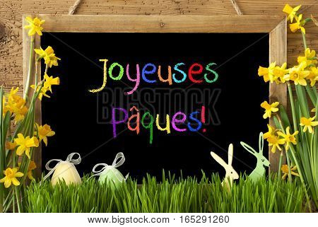 Blackboard With Colorful French Text Joyeuses Paques Means Happy Easter. Spring Flowers Nacissus Or Daffodil With Grass, Easter Egg And Bunny. Rustic Aged Wooden Background.