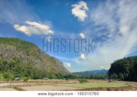 View Of Rice Farm And Cloudy Blue Sky By Local People In The Mountain, Northern Part Of Thailand