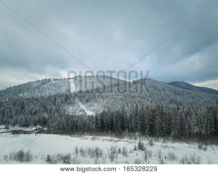 Winter landscape with fir trees in the snow in the mountains. Beautiful view in the wild Carpathians Ukraine.
