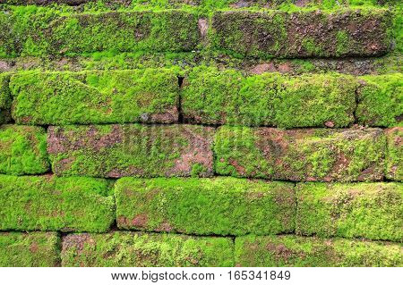 Brick wall texture captured in ancient Polonnaruwa city in Sri Lanka. The age of this bricks is millenium