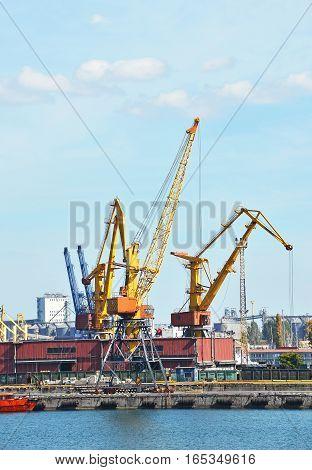 Cargo Crane And Train
