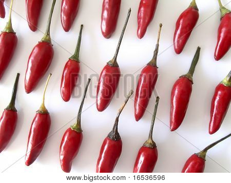 Red hot chili peppers aligned in rows over white background.