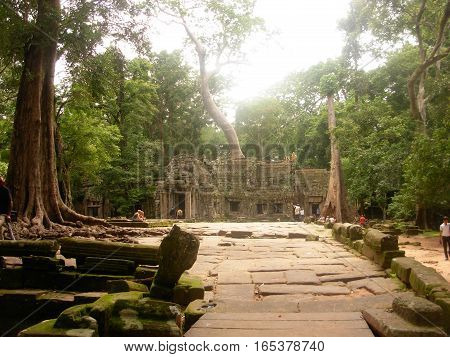 SIEM REAP, CAMBODIA - AUGUST, 06 - The entrance of Ta Phrom ancient temple with big roots and tree that grew on it The temple is also known for Tomb Raider movie