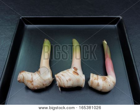 Galangal in a black rectangular plate with dark background