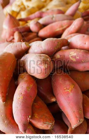 a big pile of orange and golden sweet potatoes at the farmers market