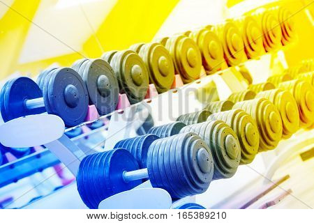Stand with a dumbbell in the gym toned in blue and yellow