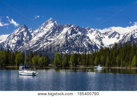 Mt. Moran At The Grand Teton National Park, Wyoming