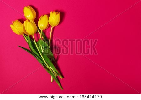 Bouquet of fresh Beautiful Yellow Tulips on Pink colorful Background. Spring concept. Top View with Copy Space.