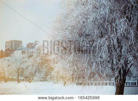 Winter landscape with snow, benches covered with snow among frosty winter trees. Red benches in a park covered with snow. Lonely bench, snow-covered trees in the city park. Sunset.