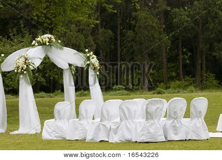 the outdoor wedding of a park.
