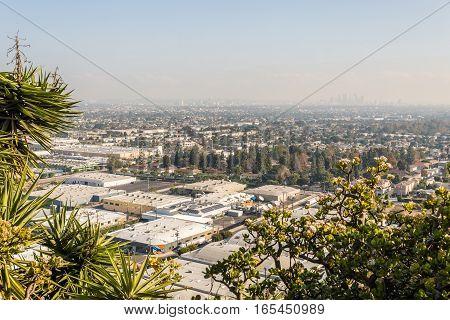 Los Angeles Cityscape W8A0368