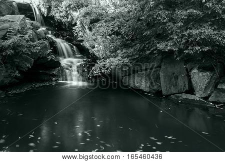 A small waterfall in NYC's Central Park.