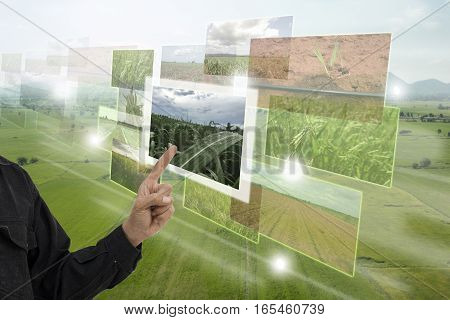 Internet of things(agriculture concept)smart farmingindustrial agriculture.Farmer point hand to use augmented reality technology to control monitor and mangement in the farm