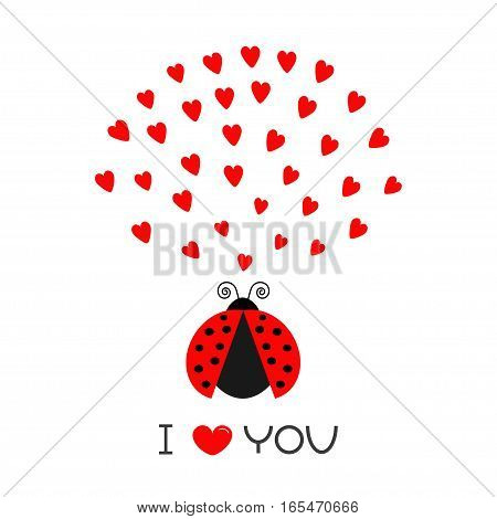 Red flying lady bug insect with hearts. Cute cartoon character. Happy Valentines Day. I Love you text. Greeting card. White background. Flat design. Vector illustration