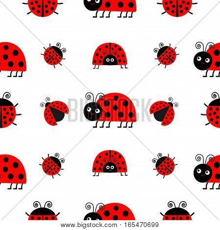 Ladybug Ladybird icon set. Baby collection. Funny insect. Seamless Pattern Wrapping paper textile template. White background. Flat design. Vector illustration.