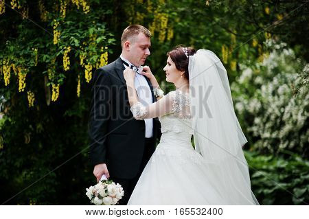Wedding Couple In Love Background Tree With Yellow Pods.