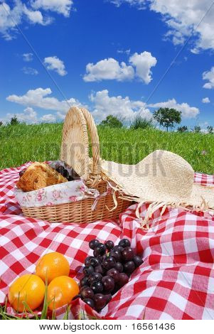 Picnic on the meadow at sunny day