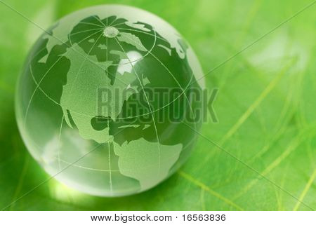 crystal globe on green leaf,Closeup.