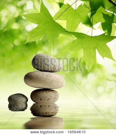 Green maple leaves over zen stone