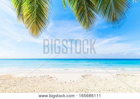 Dominican Republic, Saona Island Beach