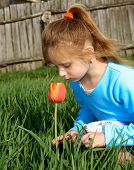 Small Girl Noses A Tulip poster