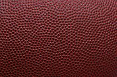 stock photo of lineman  - Detailed macro of american football - JPG