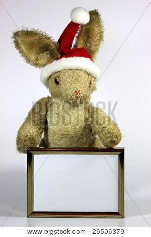 Rabbit With Christmas Hat Holding A Picture Frame
